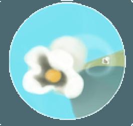 limmidi-2016-2017-12